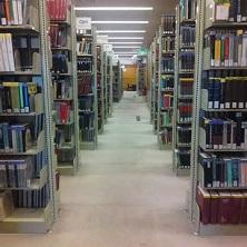 library shelves-1